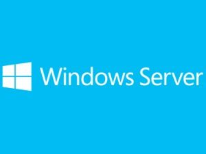 Sistema Operativo Windows Server 2019 MICROSOFT P73-07799
